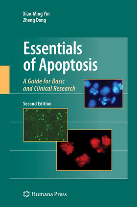 Yin / Dong | Essentials of Apoptosis | Buch | sack.de
