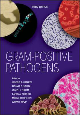 Fischetti / Novick / Ferretti | Gram-Positive Pathogens | Buch | sack.de