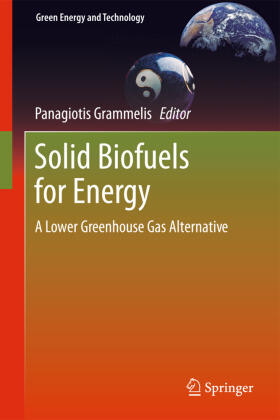 Grammelis | Solid Biofuels for Energy | Buch