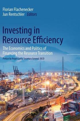 Flachenecker / Rentschler | Investing in Resource Efficiency | Buch | sack.de