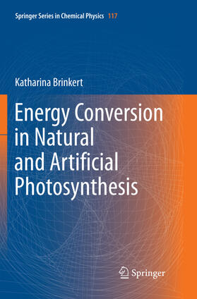 Brinkert   Energy Conversion in Natural and Artificial Photosynthesis   Buch   sack.de