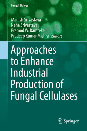 Srivastava / Srivastava / Mishra | Approaches to Enhance Industrial Production of Fungal Cellulases | Buch | sack.de