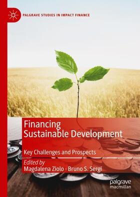 Sergi / Ziolo | Financing Sustainable Development | Buch | sack.de
