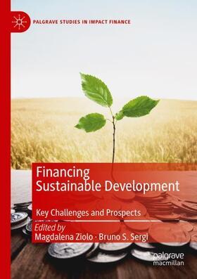 Sergi / Ziolo   Financing Sustainable Development   Buch   sack.de