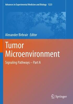 Birbrair | Tumor Microenvironment | Buch | sack.de