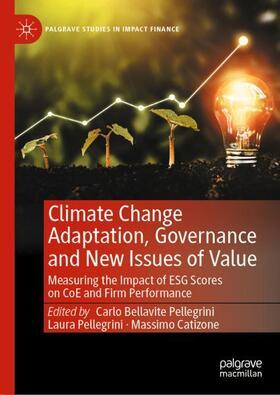 Pellegrini / Pellegrini / Catizone   Climate Change Adaptation, Governance and New Issues of Value   Buch   sack.de