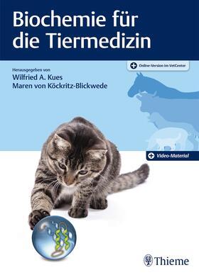 Kues / von Köckritz-Blickwede | Biochemie für die Tiermedizin | Buch | sack.de