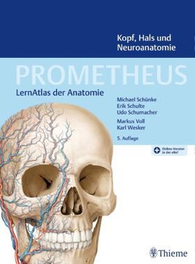 Schünke / Schulte / Schumacher | Kopf, Hals und Neuroanatomie | Buch | sack.de