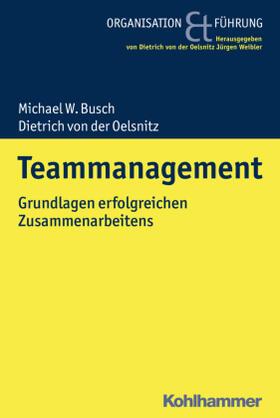 Busch / von der Oelsnitz | Teammanagement | Buch | sack.de