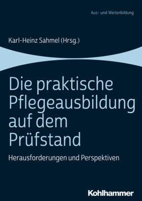 Sahmel   Die praktische Pflegeausbildung auf dem Prüfstand   Buch   sack.de