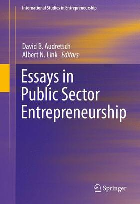 Link / Audretsch | Essays in Public Sector Entrepreneurship | Buch | sack.de