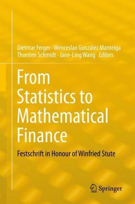 Ferger / González Manteiga / Schmidt   From Statistics to Mathematical Finance   Buch   Sack Fachmedien