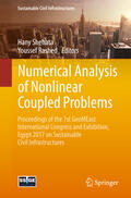 Shehata / Rashed    Numerical Analysis of Nonlinear Coupled Problems   Buch    Sack Fachmedien