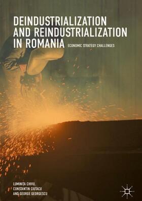 Chivu / Ciutacu / Georgescu   Deindustrialization and Reindustrialization in Romania   Buch   sack.de