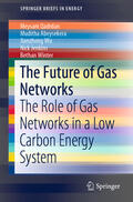 Qadrdan / Abeysekera / Wu |  The Future of Gas Networks | Buch |  Sack Fachmedien