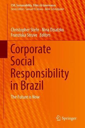 Stehr / Dziatzko / Struve | Corporate Social Responsibility in Brazil | Buch | sack.de