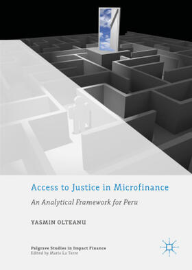 Olteanu   Access to Justice in Microfinance   Buch   sack.de