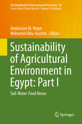 Negm / Abuhashim   Sustainability of Agricultural Environment in Egypt: Part I   Buch   sack.de