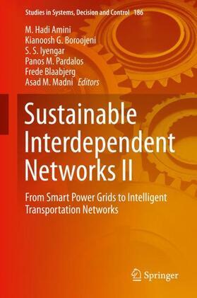Amini / Boroojeni / Iyengar   Sustainable Interdependent Networks II   Buch   sack.de