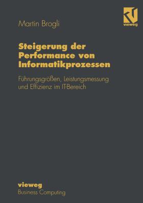 Steigerung der Performance von Informatikprozessen | Buch | sack.de