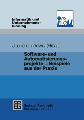 Ludewig | Software- und Automatisierungsprojekte - Beispiele aus der Praxis | Buch | sack.de