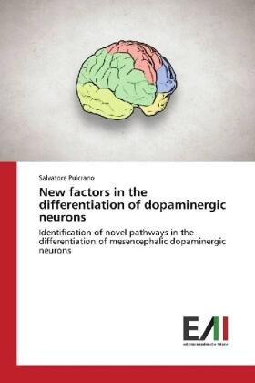 Pulcrano | New factors in the differentiation of dopaminergic neurons | Buch | sack.de