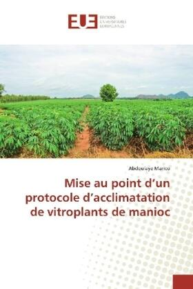 Marico | Mise au point d'un protocole d'acclimatation de vitroplants de manioc | Buch | sack.de