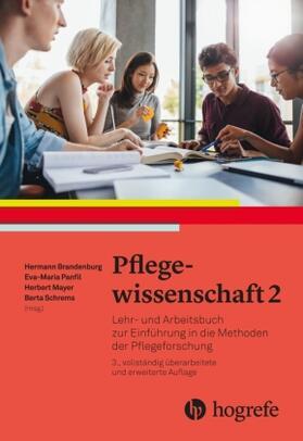 Brandenburg / Panfil / Mayer | Pflegewissenschaft. Bd.2 | Buch | sack.de