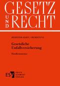 Bereiter-Hahn |  Gesetzliche Unfallversicherung | Loseblattwerk |  Sack Fachmedien