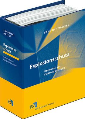 Fähnrich/Mattes   Explosionsschutz - Einzelbezug   Buch   sack.de