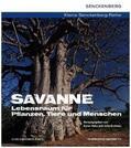 Hahn, Karen / Krohmer, Julia |  Savanne - Lebensraum für Pflanzen, Tiere und Menschen | Buch |  Sack Fachmedien