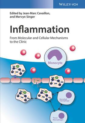 Cavaillon / Singer | Inflammation, 4 Teile | Buch | sack.de