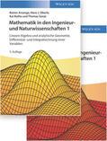 Ansorge / Oberle / Rothe Mathematik in den Ingenieur- und Naturwissenschaften. Bd.1 | Sack Fachmedien