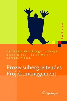 Versteegen | Prozessübergreifendes Projektmanagement | Buch | Sack Fachmedien