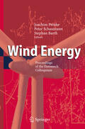 Peinke / Schaumann / Barth    Wind Energy   Buch    Sack Fachmedien