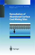 Mudroch / Klapper / Kennedy |  Remediation of Abandoned Surface Coal Mining Sites | Buch |  Sack Fachmedien