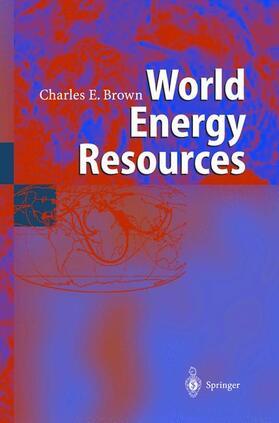 Brown | World Energy Resources | Buch | sack.de