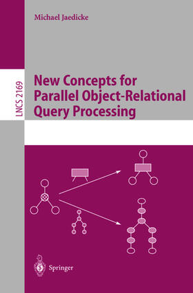 Jaedicke | New Concepts for Parallel Object-Relational Query Processing | Buch | sack.de