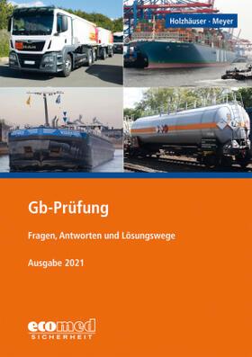 Holzhäuser / Meyer | Gb-Prüfung | Buch | sack.de