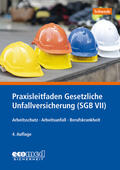 Schwede |  Praxisleitfaden Gesetzliche Unfallversicherung (SGB VII) | Buch |  Sack Fachmedien