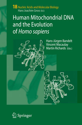 Bandelt / Richards / Macaulay | Human Mitochondrial DNA and the Evolution of Homo sapiens | Buch | sack.de