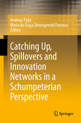 Pyka / Derengowski Fonseca   Catching Up, Spillovers and Innovation Networks in a Schumpeterian Perspective   Buch   sack.de