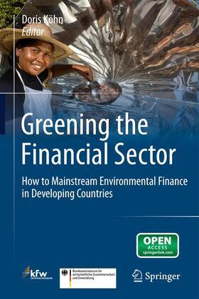 Köhn | Greening the Financial Sector | Buch | sack.de