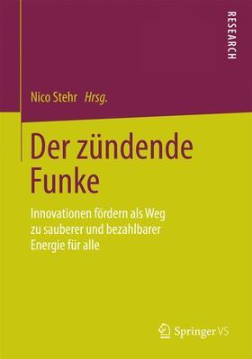 Stehr   Der zündende Funke   Buch   sack.de