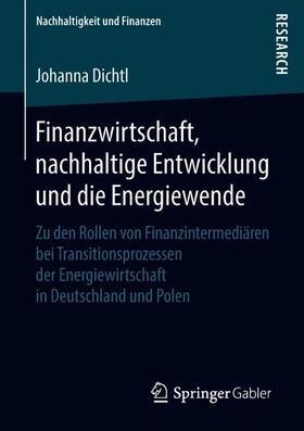 Dichtl | Finanzwirtschaft, nachhaltige Entwicklung und die Energiewende | Buch | sack.de