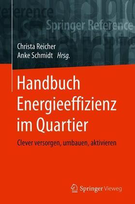 Reicher / Schmidt | Handbuch Energieeffizienz im Quartier | Buch | sack.de