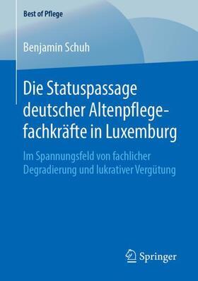 Schuh   Die Statuspassage deutscher Altenpflegefachkräfte in Luxemburg   Buch   sack.de