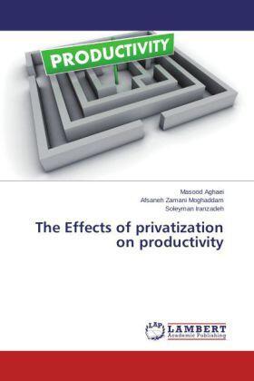 Aghaei / Zamani Moghaddam / Iranzadeh | The Effects of privatization on productivity | Buch | sack.de