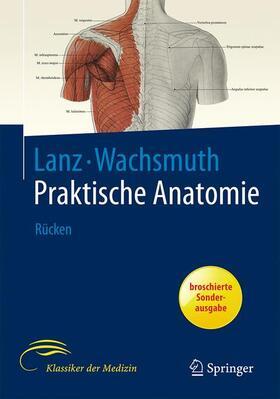 Rickenbacher / Landolt / Theiler | Rücken | Buch | sack.de