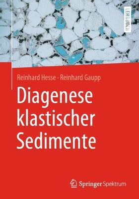 Hesse / Gaupp | Diagenese klastischer Sedimente | Buch | sack.de